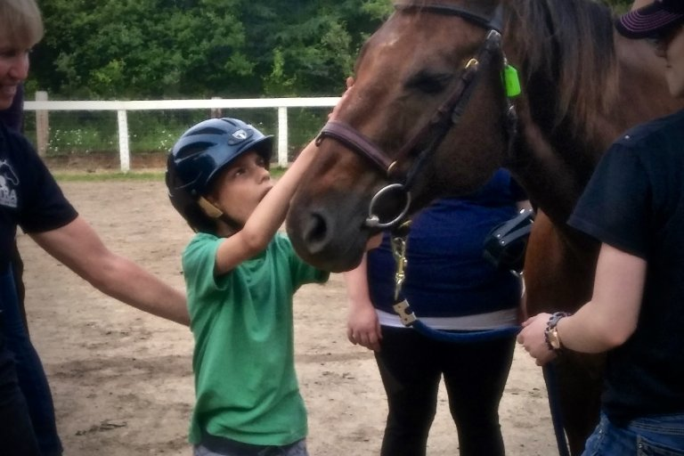 A little boy in a green shirt petting a horses face